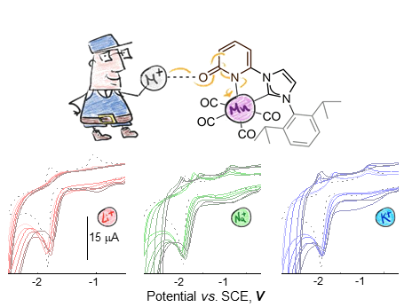 Mn(I) Complex Redox Potential Tunability by Remote Lewis Acid Interaction