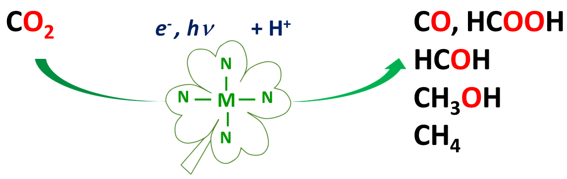 Molecular Catalysis of CO2 Reduction: Recent Advances and Perspectives in Electrochemical and Light-Driven Processes with Selected Fe, Ni and Co Aza Macrocyclic and Polypyridine Complexes